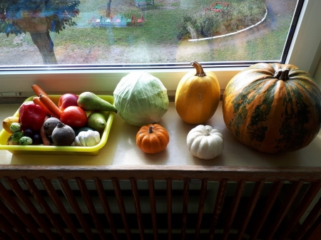 Wycieczka do warzywniaka grupa 5