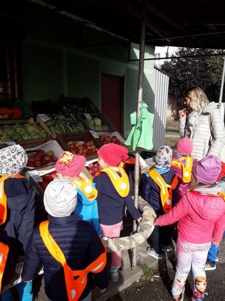 Wycieczka do warzywniaka - grupa II