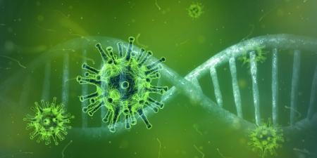 Co musisz wiedzieć o koronawirusie